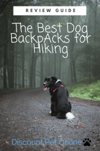 The Best Dog Backpack For Hiking