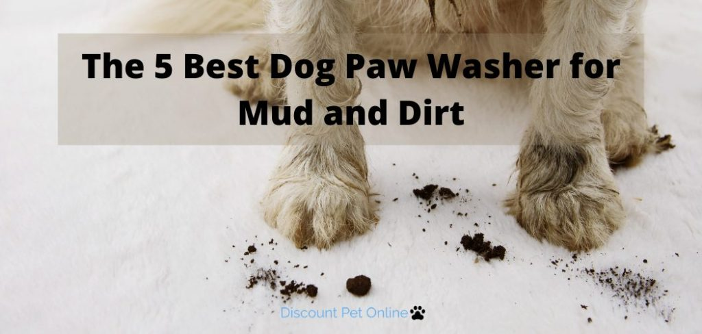 The 5 Best Dog Paw Washer