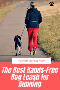 The Best Hands-Free Dog Leash for Running