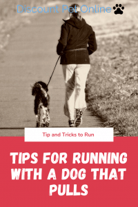 Tips for running with a dog that pulls