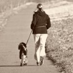 tips for running with a dog
