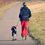 running with a hands-free dog leash