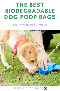 The Best Biodegradable Dog Poop Bags