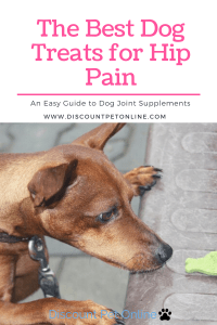 The Best Dog Treats for Hip Pain