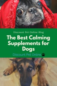 The Best Calming Supplements for Dogs