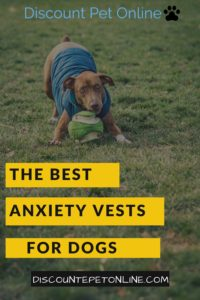 The Best Anxiety Vests for Dogs